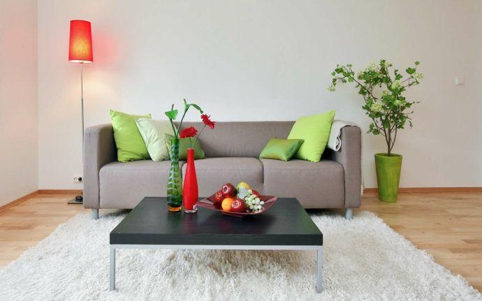 Sofa Deko Kissen Pflanze Tisch Stehlampe Beleuchtung Einrichtung modern Grün Rot Weiß-Feng Shui im Wohnzimmer