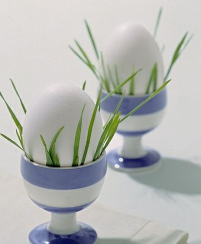 Vorbereitung auf Ostern - Trendomat.com