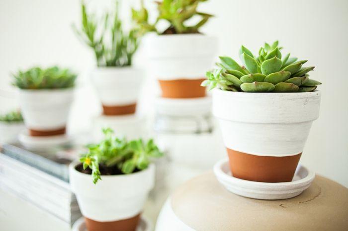 Ein Anstrich mit weißer Farbe kreiert einen angenehmen Kontrast-Pflanzentopf Blumentopf DIY Keramik Garten Sukkulenten Zimmerpflanzen