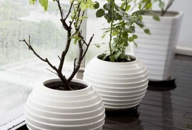 Dekorative bodenvasen im modernen wohndesign for Wohndesign vasen