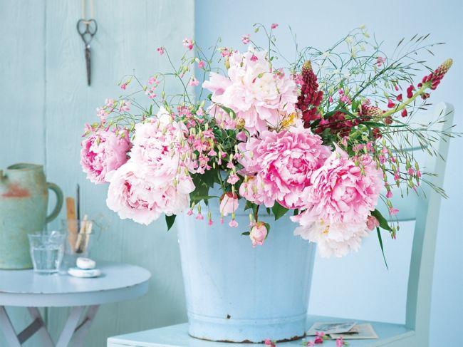 Frische Blumenpracht für jedes Zimmer, Pfingstrosen, Schere, Retro-Schöne Deko-Ideen