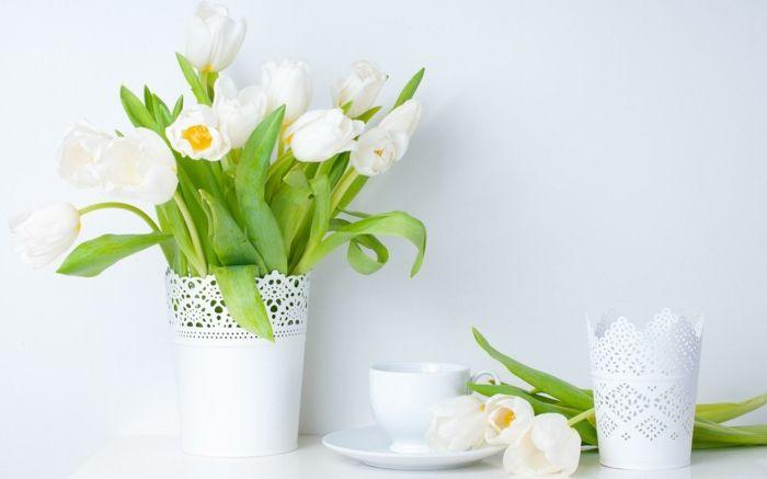 Schnittblumen auf weißem Hintergrund-Dekoration Einrichtung Wohnzimmer