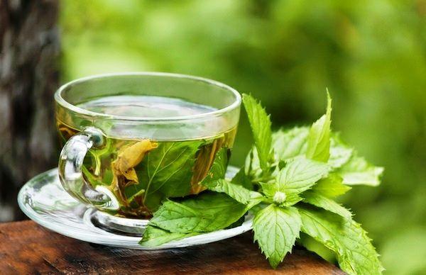 Sehr beliebt und heilsam ist der Minztee-Minztee Wirkung heilsam Teesorten Teepflanze Mittel gegen Magenschmerzen Brustkrebsrisiko verringern