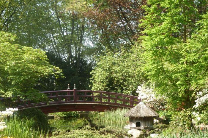 japanischer Garten mit Holzbrücke