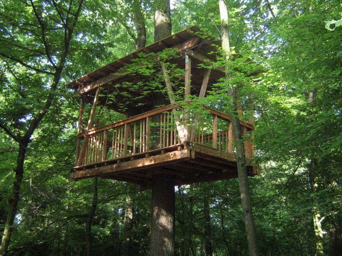 Baumhaus als perfekter Meditationsort