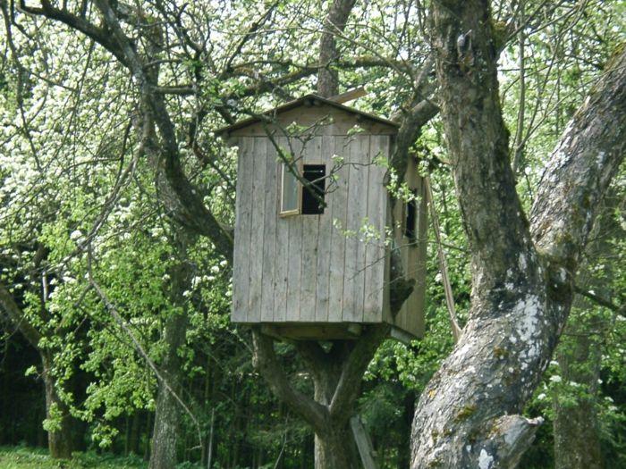 Baumhaus wie ein Vogelnest
