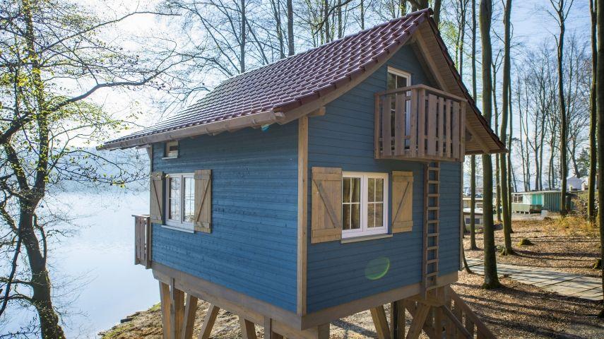Das Haus Auf Dem Baum Vom Kindertraum Zur Realität