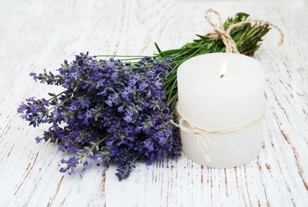 Dekotipp Lavendel