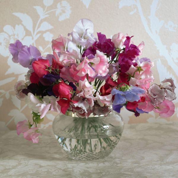 Duftwicken halten lange in der Vase
