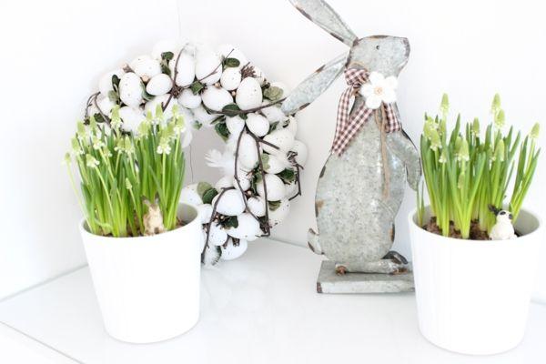 Eierkranz Topfpflanzen frühlingshaft