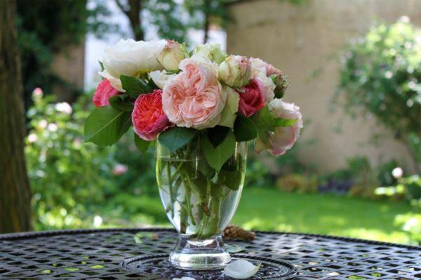 Englische Rosen sind exzellent für kleine Vasen geeignet