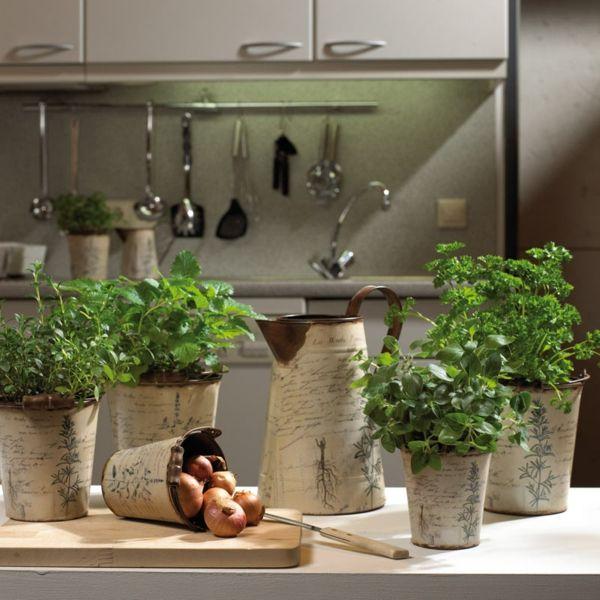 sch ne dinge leicht gemacht kr uter aromatisch und dekorativ. Black Bedroom Furniture Sets. Home Design Ideas