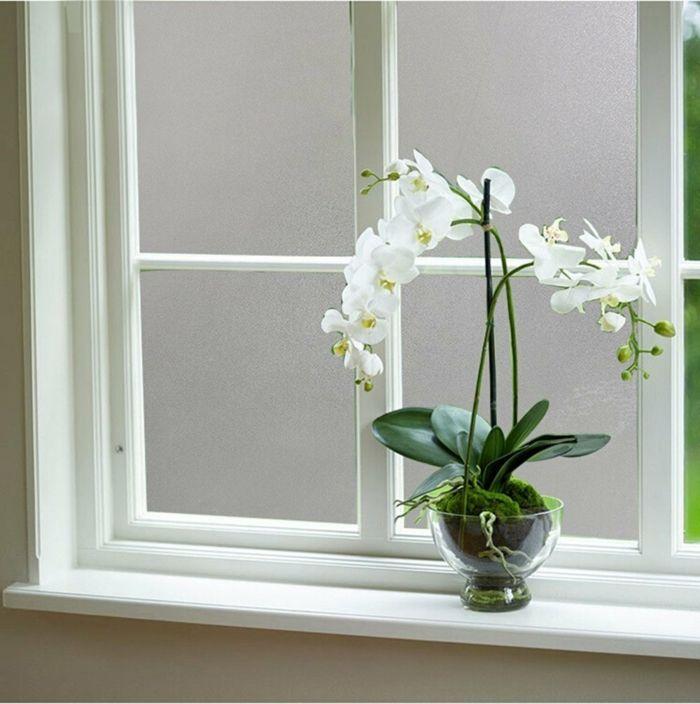 Mattglasfolie schafft Privatsphäre in jedem Raum-Milchglasfolie Sichtschutz