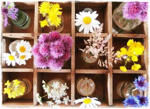 Schnittlauch im Zentrum der Dekoration mit Blühten