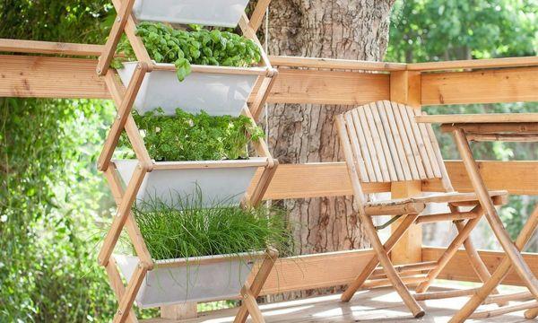 Vitaminbar verschönern den Balkon-Kräutergarten Terrasse einrichten