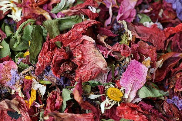 ein Potpourri mit getrockneten Kräutern und Blühten anlegen