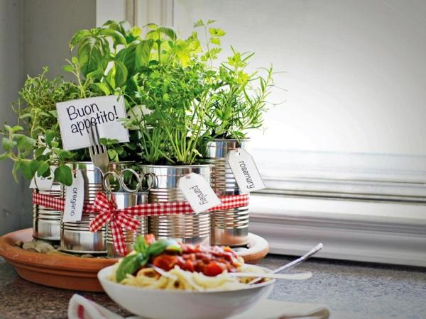 kleiner Kräutergarten für die Küche