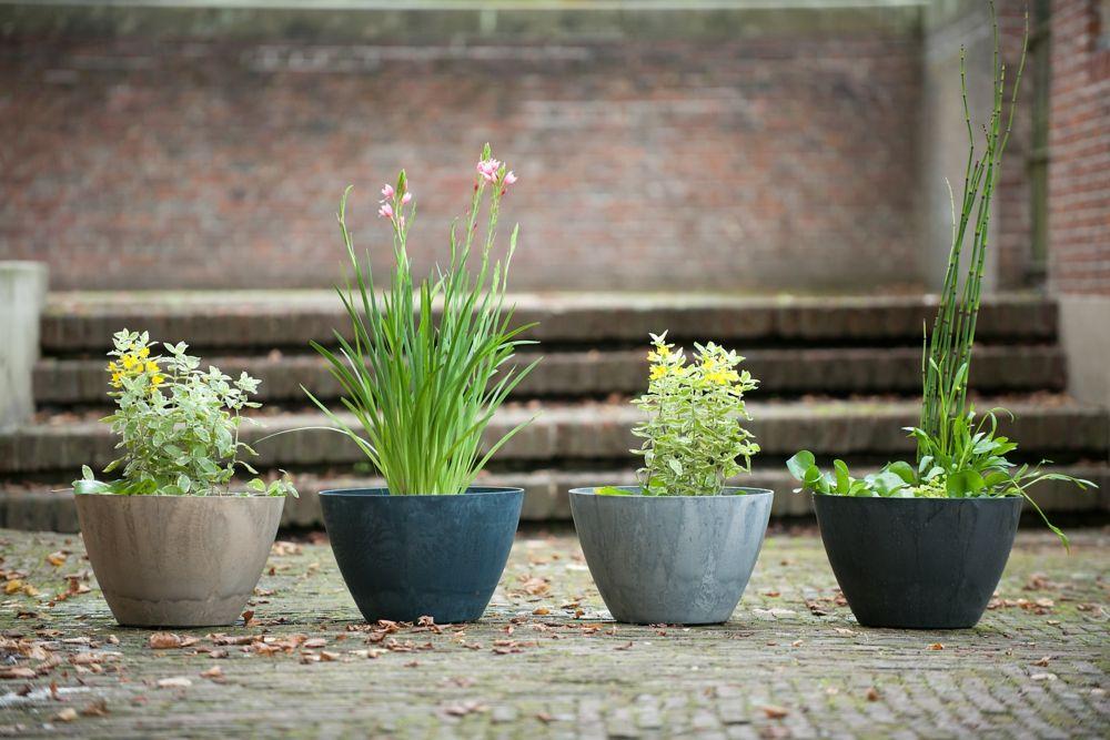 Außenbereich Pflanzkübel Dekoration Miniteich