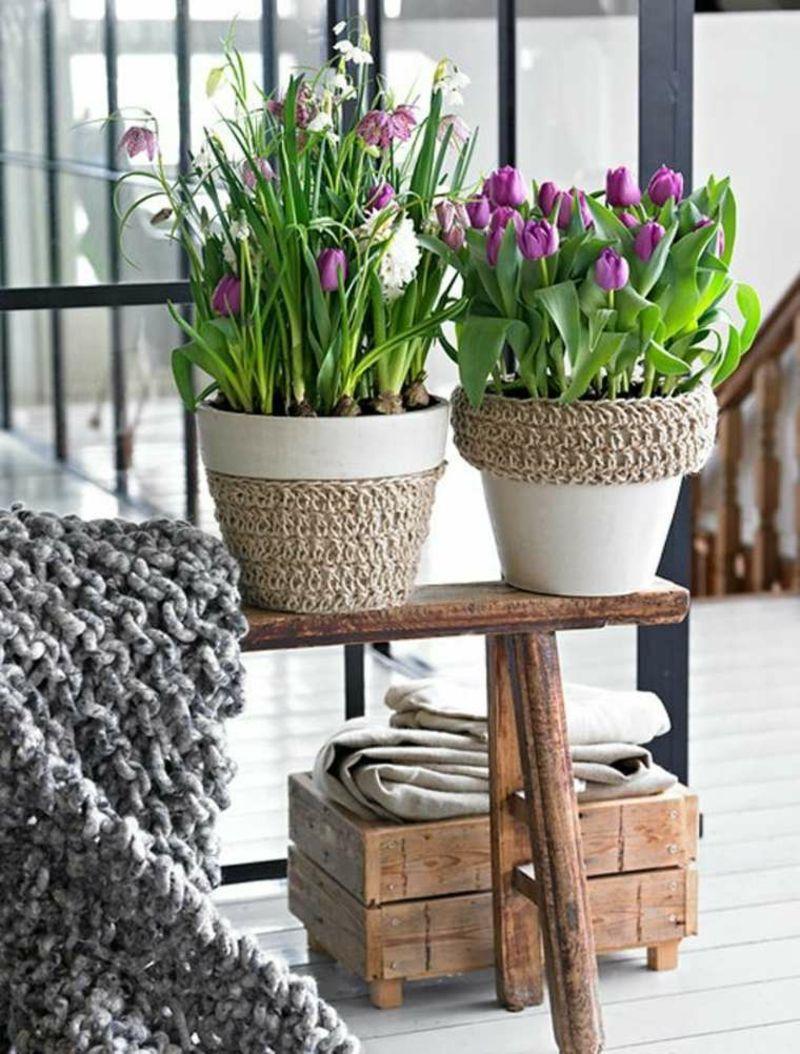 Frühlingsblumen in schönen Töpfen werden zum Blickfang im Wohnzimmer