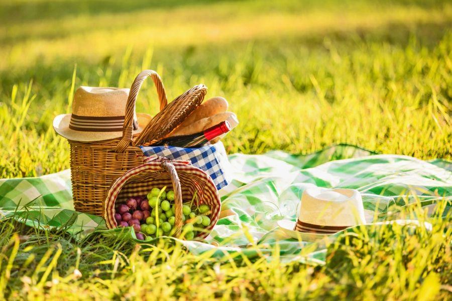 Natur Ausflug Freizeitaktivität Frühling Sommer