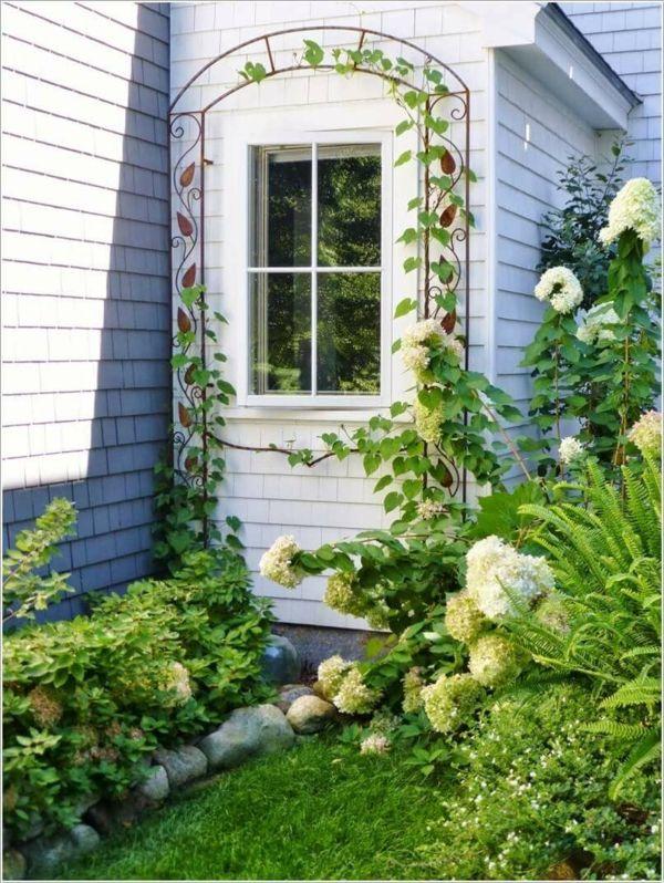 Spalier mit Kletterpflanzen am Fenster macht den kleinen Garten noch hübscher