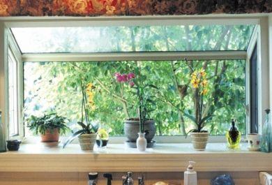 Wie viel licht brauchen unsere zimmerpflanzen - Zimmerpflanzen ohne licht ...