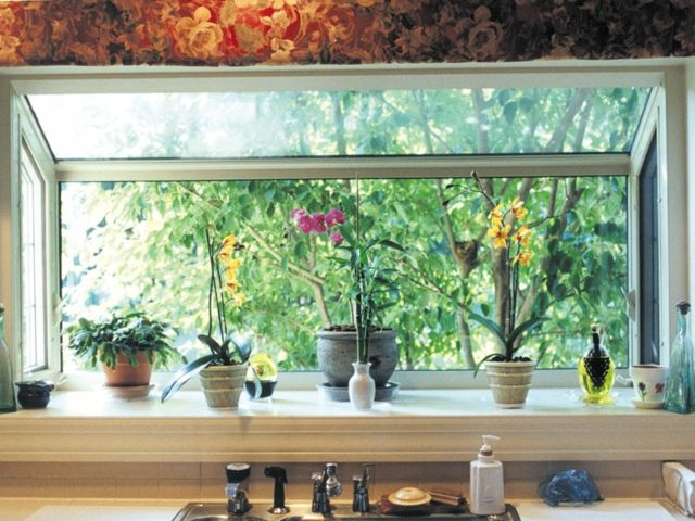 Topfpflanzen Fensterbank Küche indirekt Tageslicht