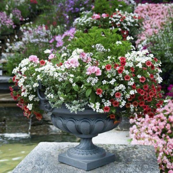 diese Steinschale mit bunten Blumen ist ein echter Blickfang im Garten