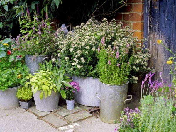 kleiner Garten mit Blumen und Kräutern in Metalgefäßen
