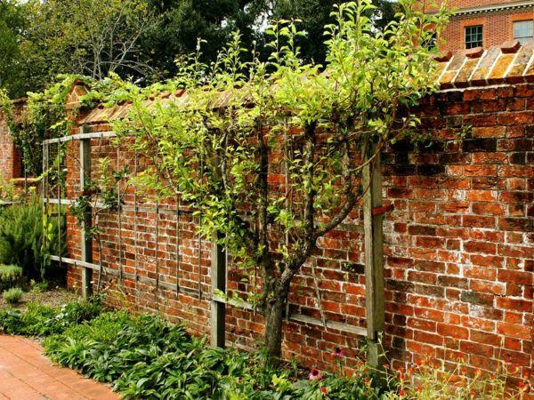 kreative Gartenideen mit Spaliere an den Wänden