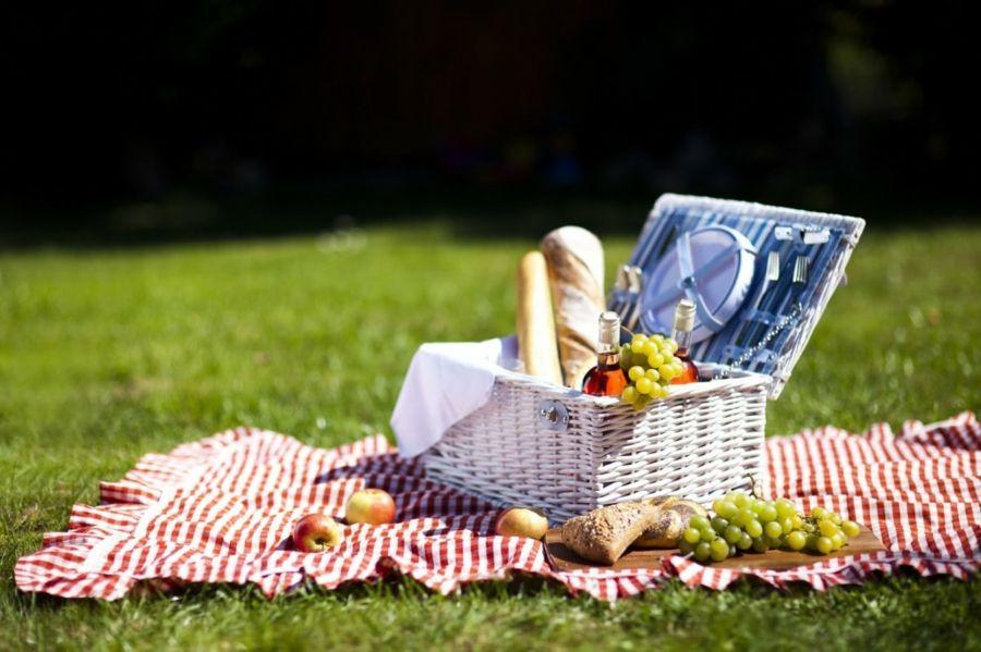 kulinarisch Genuss Picknick im Freien