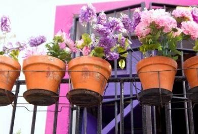 Es Ist Hochste Zeit Dass Sie Sich Um Ihre Balkonpflanzen Kummern