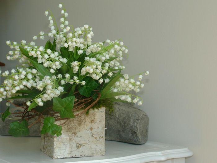 Schnittblume frisch Maisglöckchen Blumenstrauß