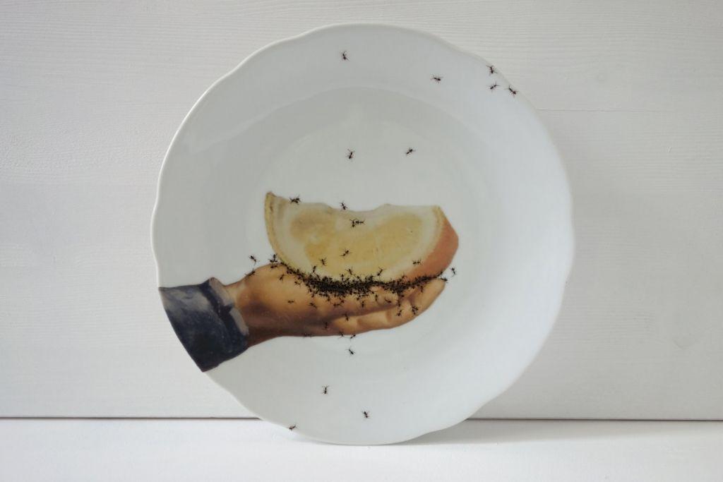 Teller Vintage Porzellan bemalt Ameisen