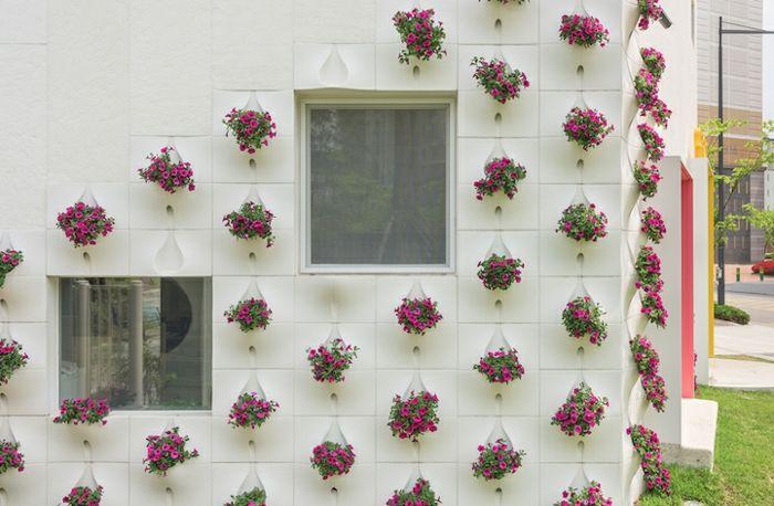quadratisch Fenster unterschiedlich Höhe grüne Wand