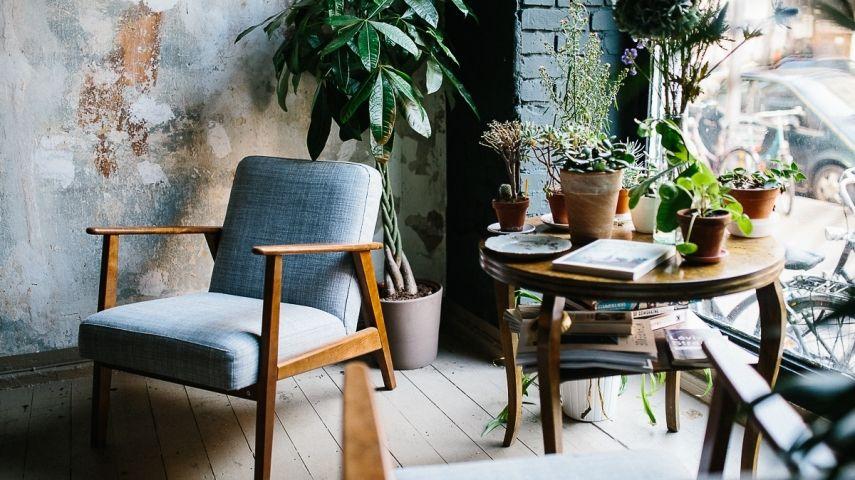 Kreative Ideen Für Zuhause 10 ideen für ihre neuen pflanzen zu hause trendomat com