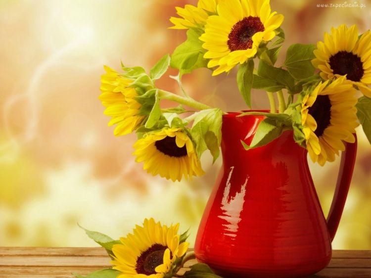 Einen strahlenden Blumenstrauß aus Sonnenblumen erfreut das Auge und schmückt jedes Ambiente