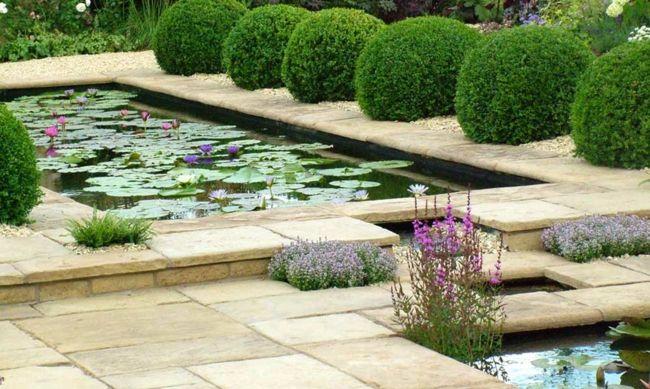 Eine der passen Pflanzen für die Gartenkunst ist Buchs