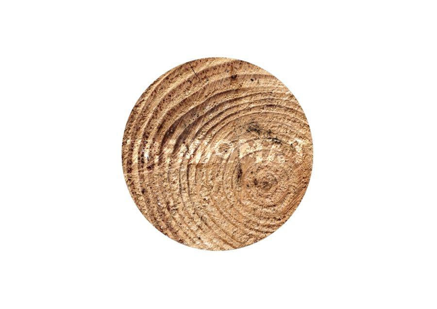 Element Holz-Elemente in Feng Shui