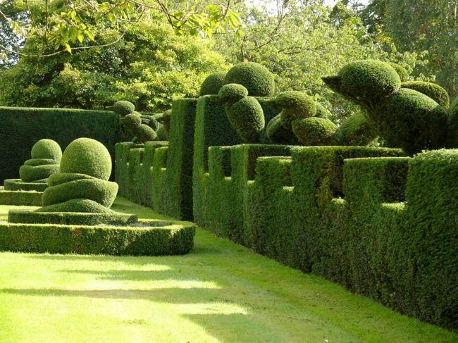 Figuren aus immergrünen Pflanzen verleihen den Grundstück Struktur in jeder Saison