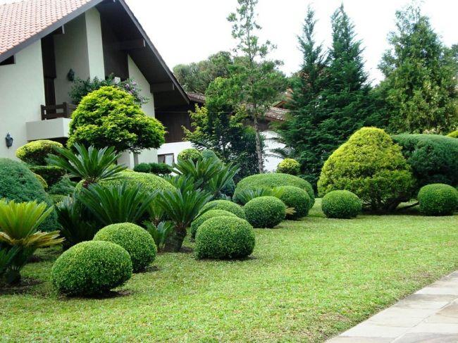 Garten mit runden Figuren aus Buchs vor dem Haus