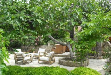 Harmonie In Heimischen Garten Mit Feng Shui Bringen Trendomat Com