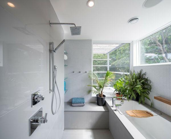 Im Badezimmer fühlen sich Pflanzen besonders wohl