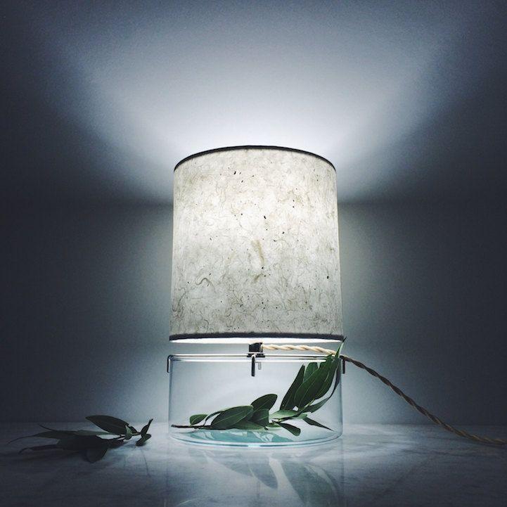 Terrarium minimalistisch Design Tischlampe breit Glasfuss Interieurpflanze Deko