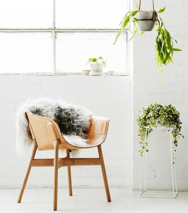 Wohnung Ideen Pflanzen Holzsessel weiß Hängepflanze