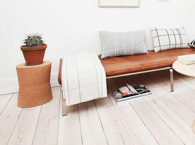 Wohnung Ideen Pflanzen Kaktee Dekokissen Decke Holzboden Tontopf