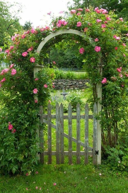 Gartenbogen Kletterrose Holztür im Garten