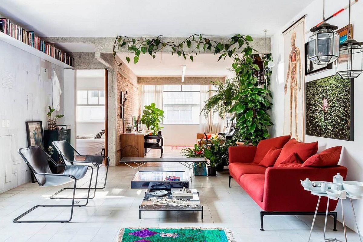 Die Kletterpflanze dient als optische Trennwand in der Wohnung