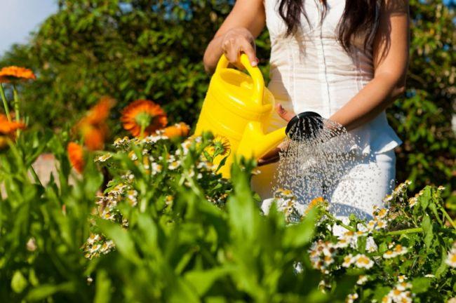 Gartenaccessoires in bunten, sommerlichen Farben bringen Frische in den Garten