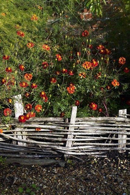 Landhausgarten Blumen Ideen für einen Gartenzaun
